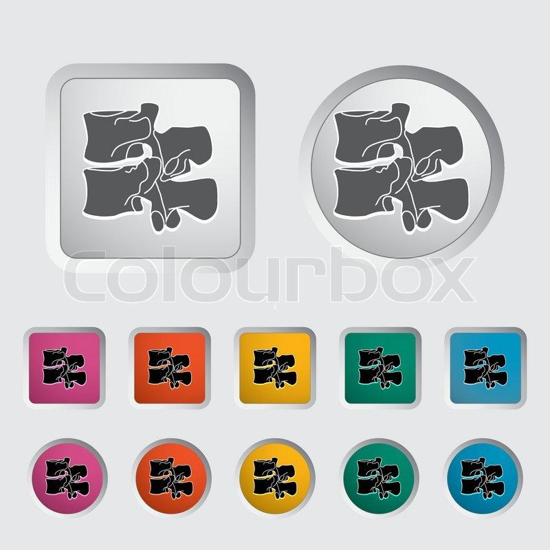 Anatomie der Wirbelsäule icon | Vektorgrafik | Colourbox