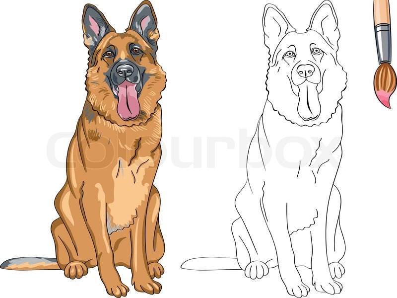 vector coloring book of smiling dog german shepherd stock vector colourbox - German Shepherd Coloring Pages