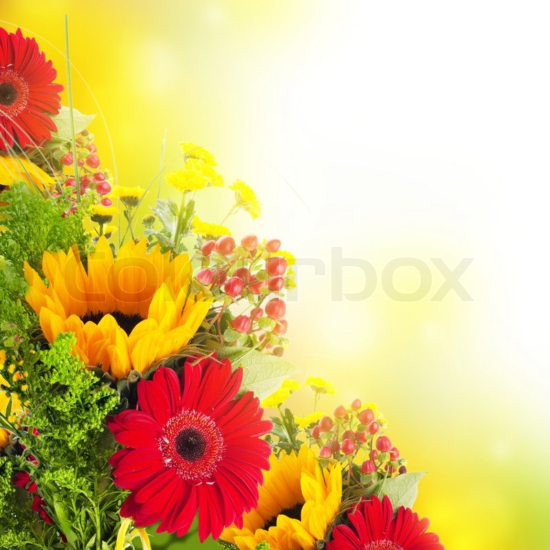 Autumn flowers, bouquet from gerber and sunflowers, stock photo
