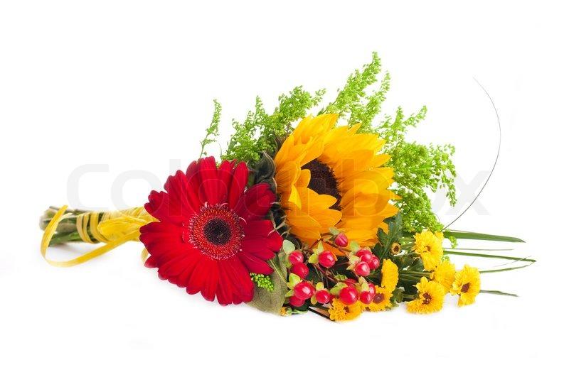 herbst blumen bouquet von gerber und sonnenblumen stockfoto colourbox. Black Bedroom Furniture Sets. Home Design Ideas