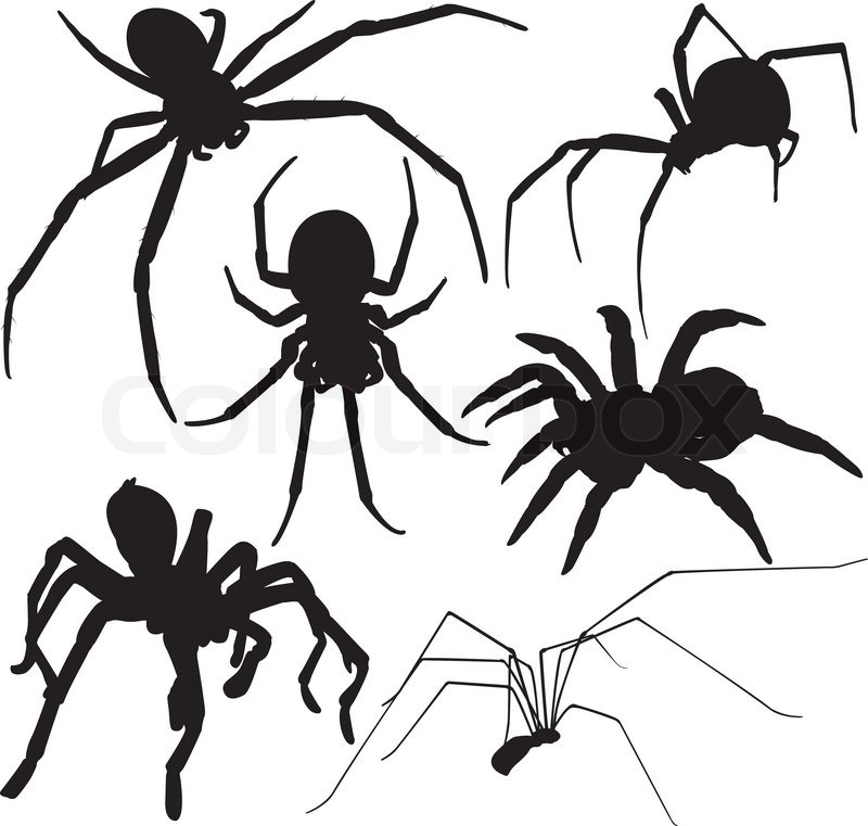 Scary Monster Coloring Pages For Adults also 16846 further Creepy Spider Vector Silhouette On White Background Tarantula Birdeater Huntsman Black Widow Cellar Spider Etc Layered Fully Editable Vector 5640701 likewise Stock Photos Dancing Skeleton Image10438553 likewise Bare Tree Images. on scary halloween bird