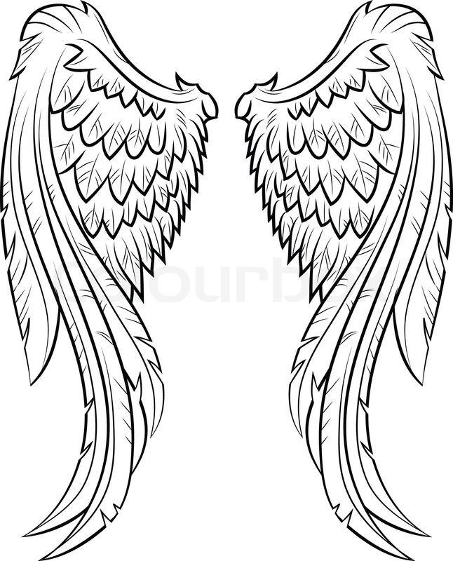 Flügel | Vektorgrafik | Colourbox