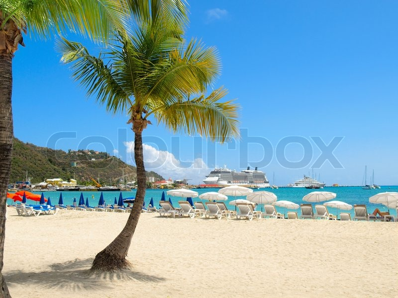 Tropical Beaches With Palm Trees Tropical Beach With Palm Tree