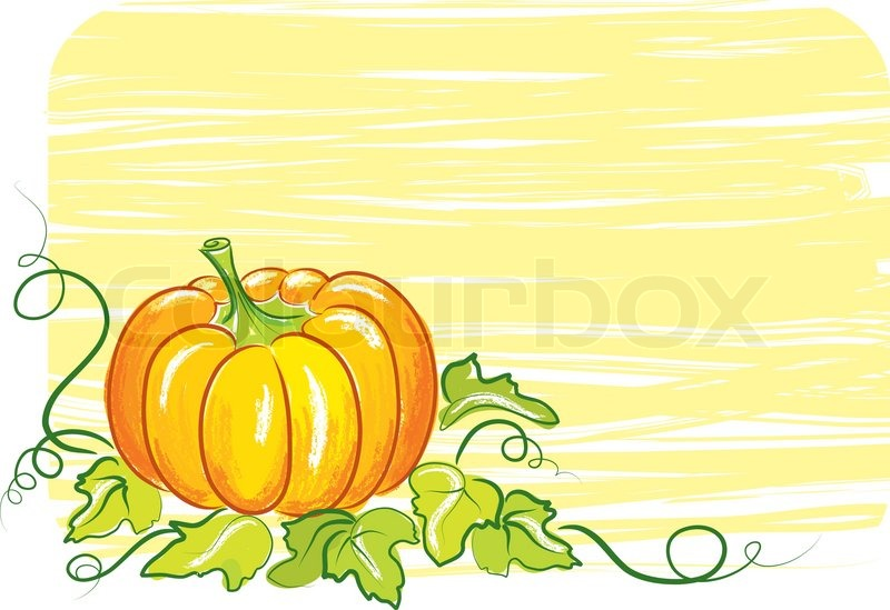 healthy fruit images is a pumpkin a fruit or vegetable