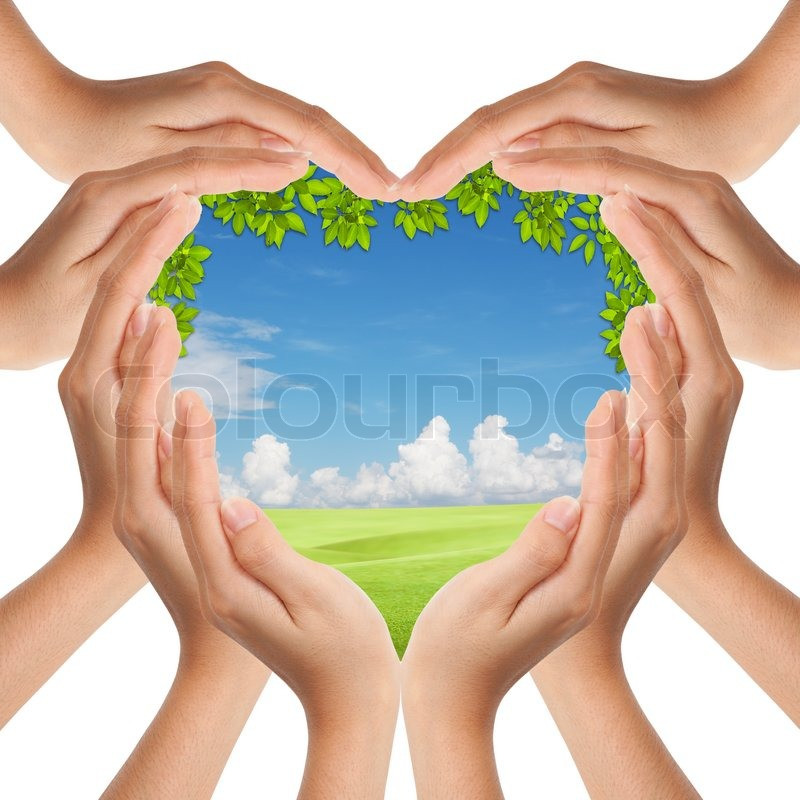 Hands make heart shape cover nature, stock photo
