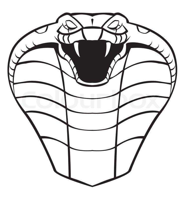 Egyptian Cobra Drawing Cobra Head