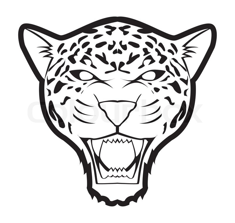 angry leopard drawing