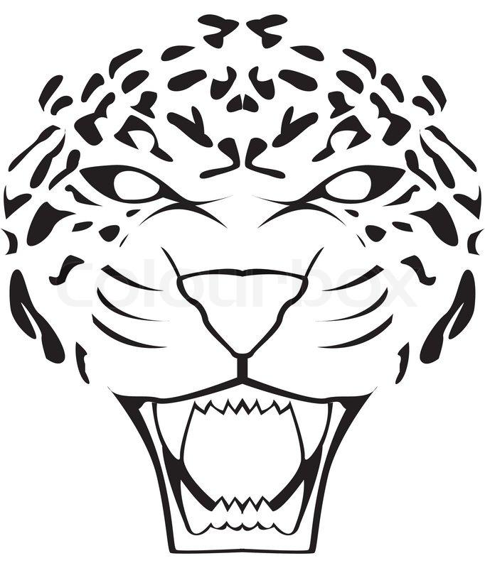 77e1329ac Leopard face   Stock vector   Colourbox