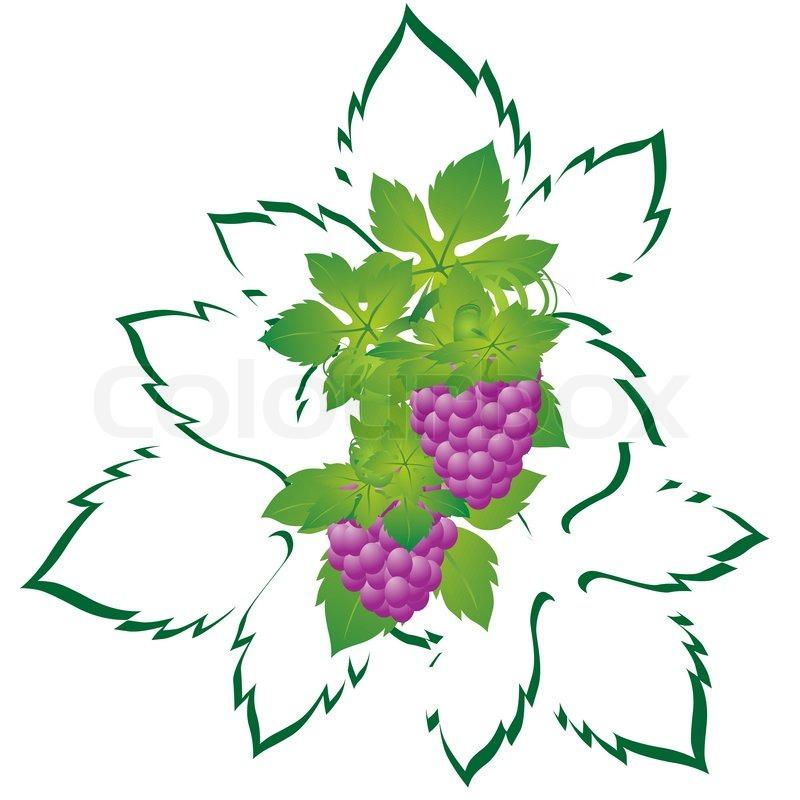 Umriss badge aufkleber stockfoto colourbox for Clipart frutta
