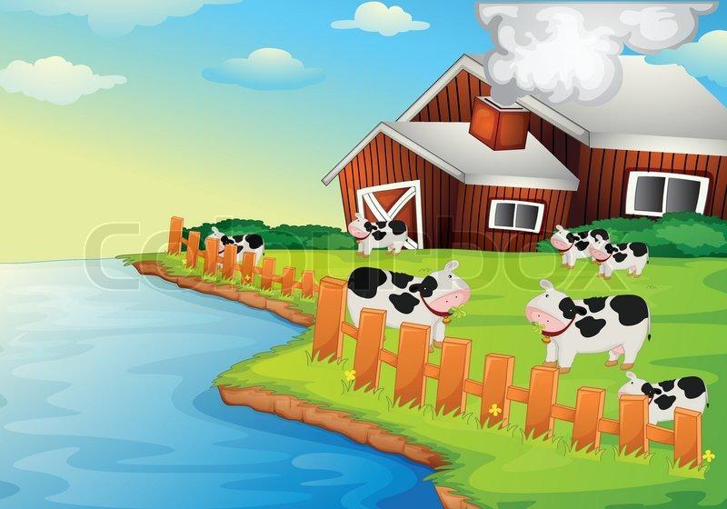 Farm Animal Pictures