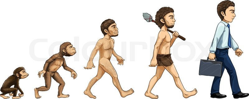 a short overview of human evolution