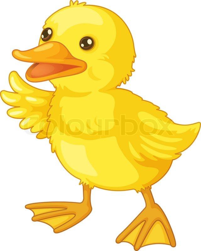 cute cartoon duck stock vector colourbox rh colourbox com cute cartoon duckling cute duck cartoon wallpaper