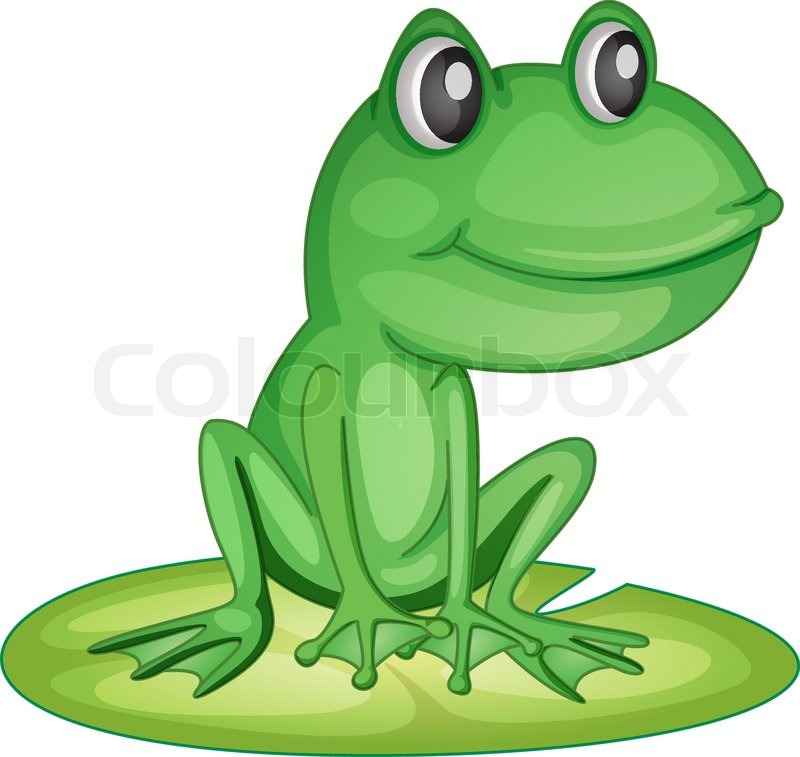 Frog on a lily pad  Stock Vector  Colourbox