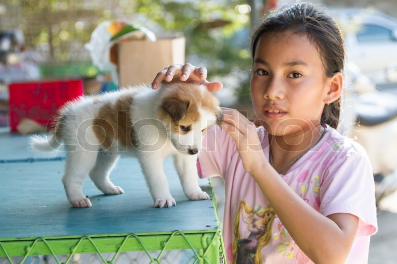 Young Asia girl and Thai puppy dog, stock photo