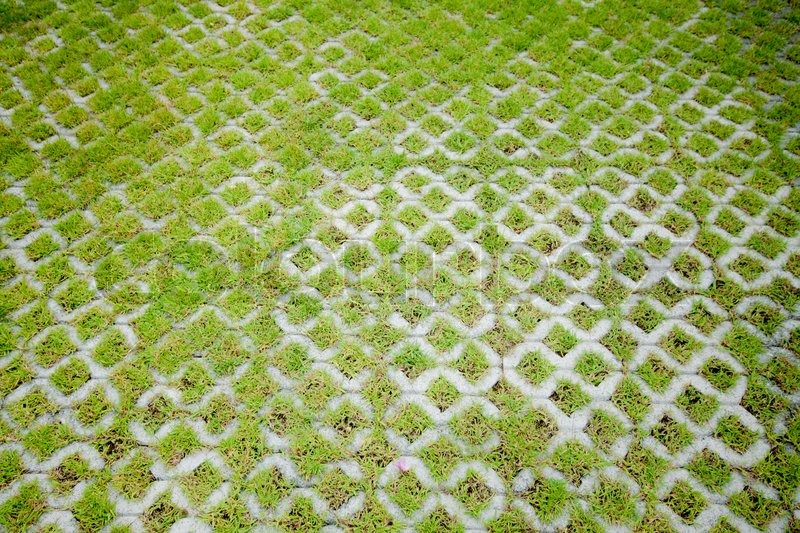 Green Floor concrete floor with green grass | stock photo | colourbox