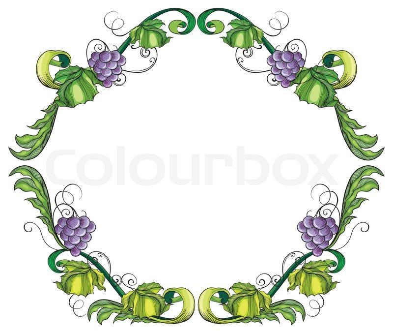 A grape vine border   Stock Vector   Colourbox