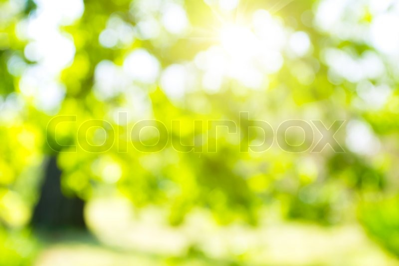 Abstract nature background, stock photo