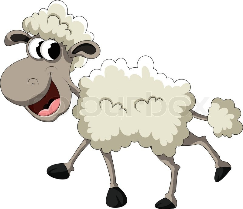 Funny Sheep Cartoon