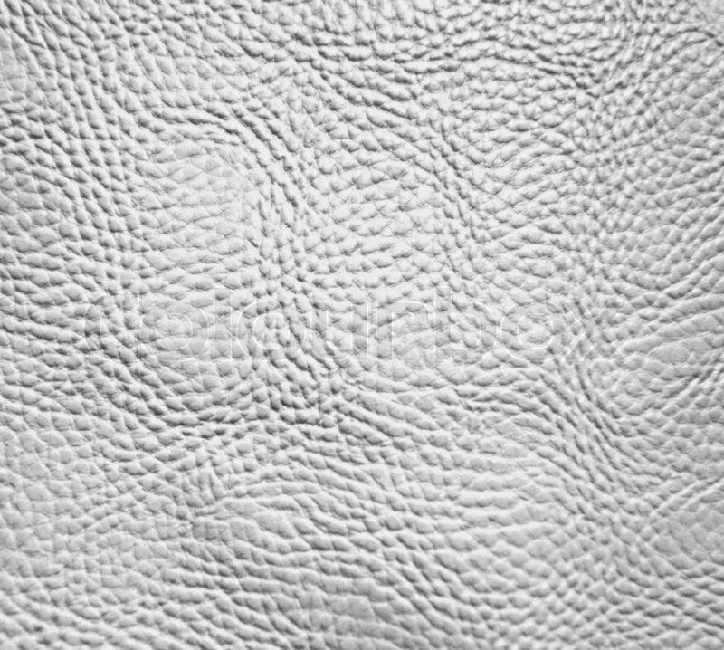 White skin texture | Stock Photo | Colourbox Dolphin Skin Texture