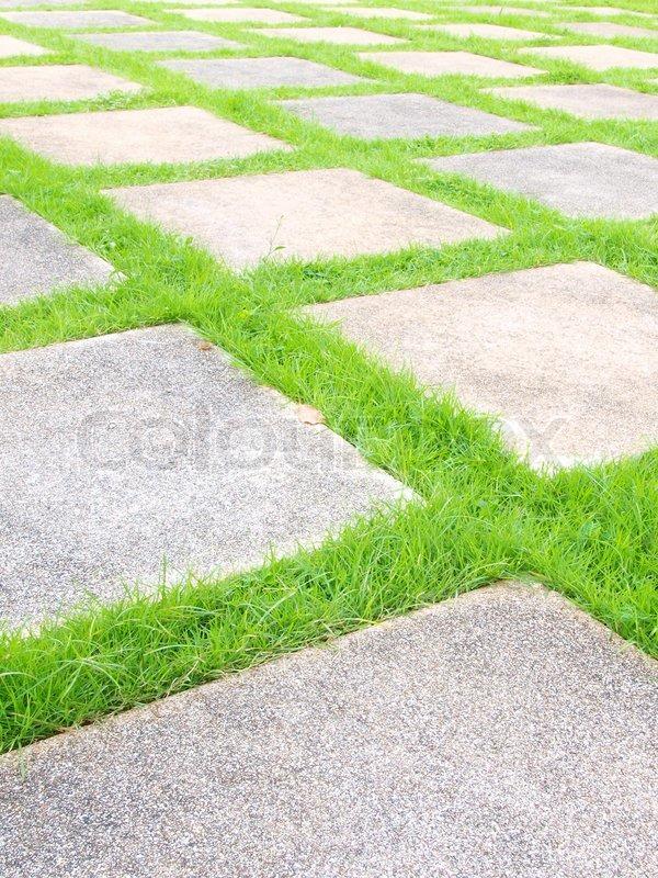 beautiful grass tiles walk way in the garden stock photo colourbox - Garden Tiles