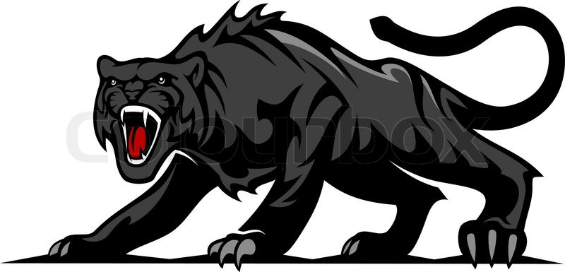 danger black panther or puma for mascot and tattoo design stock vector colourbox cougar clip art images cougar clip art images