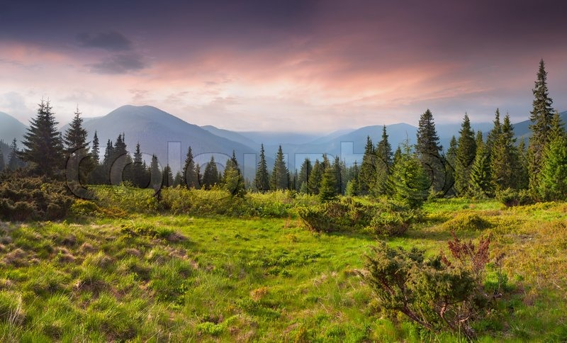Beautiful summer landscape in the mountains Sunrise, stock photo