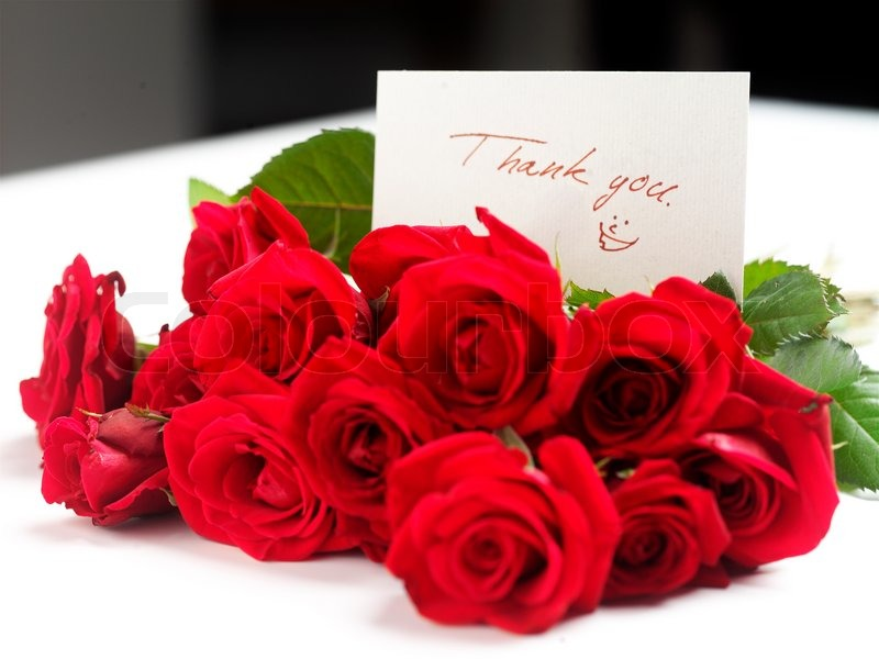 Bouquet of red roses with a thank you note | Stock Photo | Colourbox