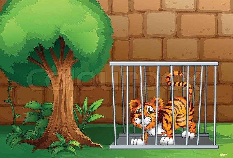 Ein Tiger Im Käfig