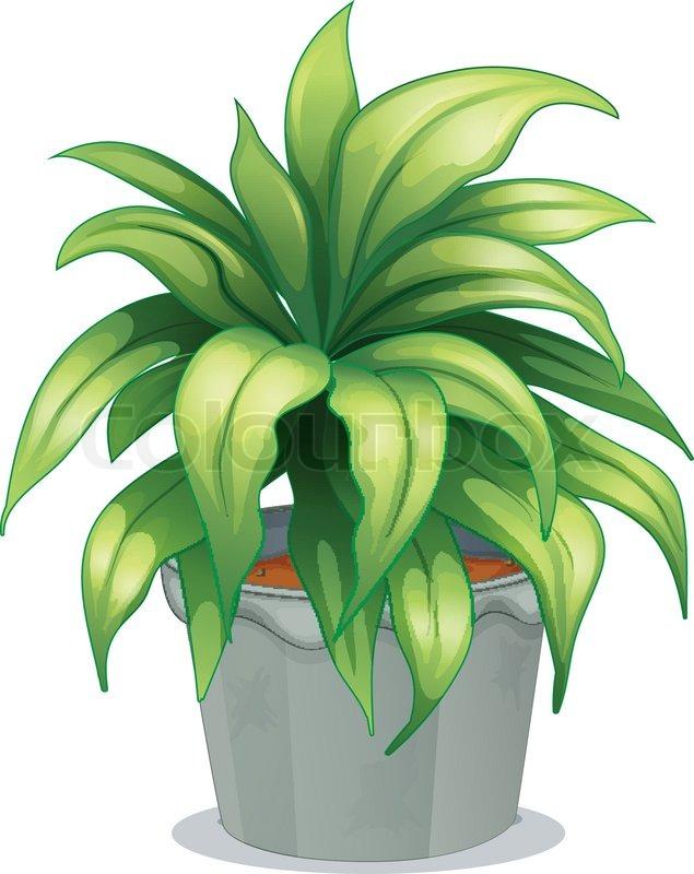 Black And White Flower clipart - Plant, Green, Leaf, transparent clip art