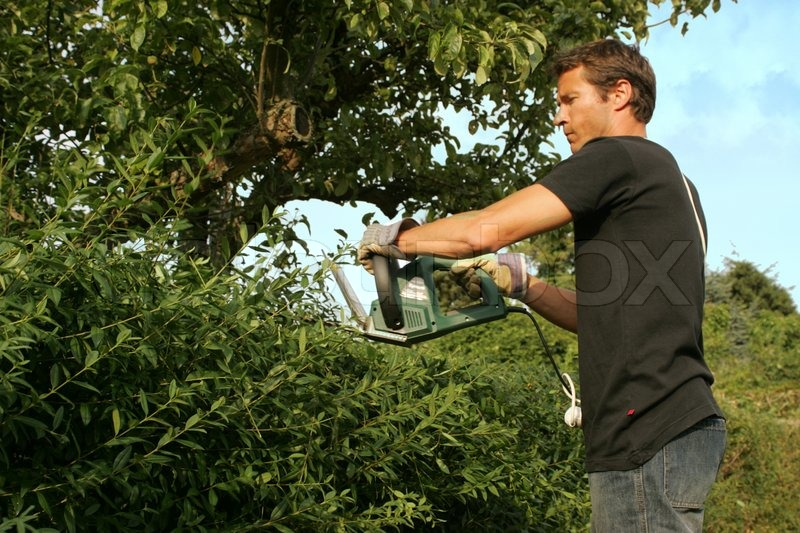 Man Doing Garden Work Stock Photo Colourbox