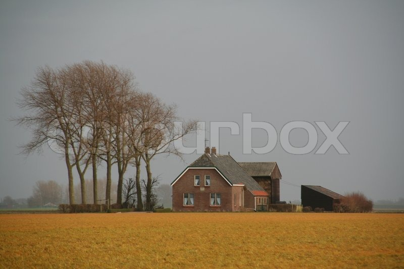 Stock image of 'Farm with bare trees in the countryside in fall.'