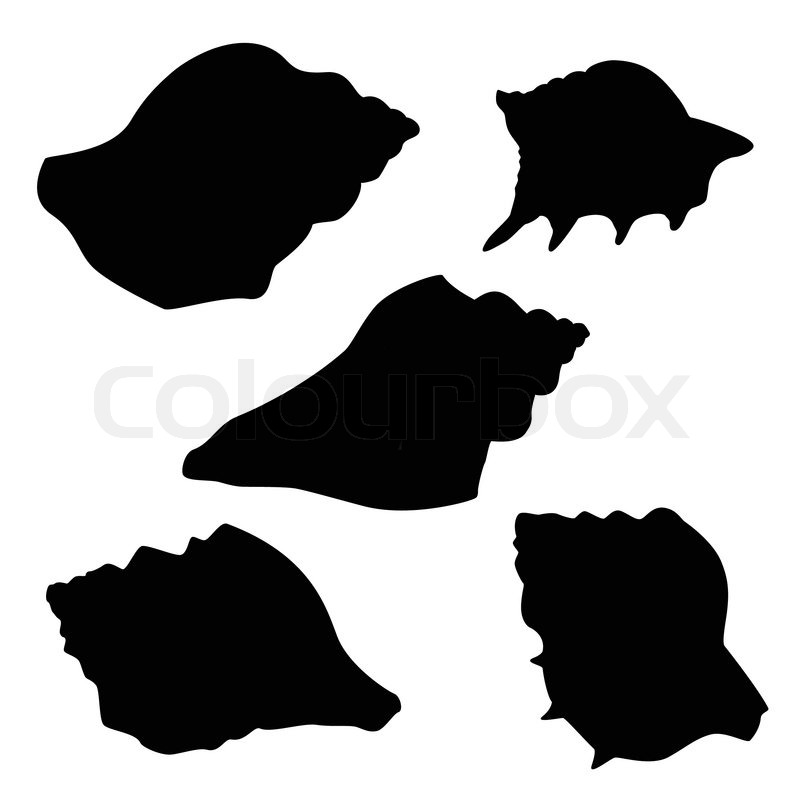 Silhouettes of Seashells | Stock Vector | Colourbox
