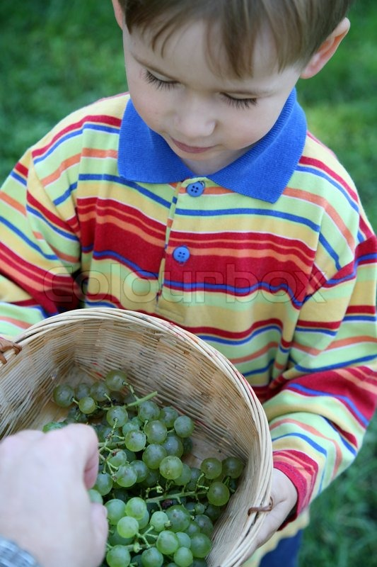 Stock image of 'Little boy holding basket with grapes'