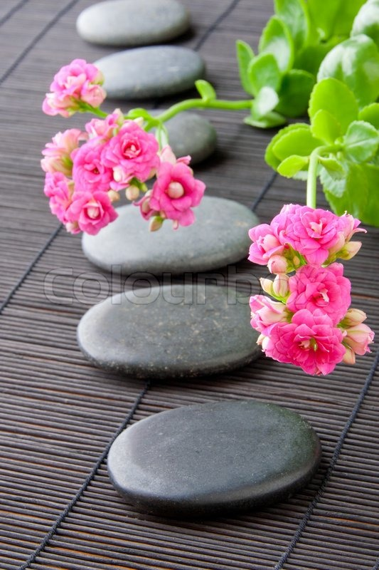 Stones Path With Flowers For Zen Spa Background Vertical Selective Focus On The First Flower