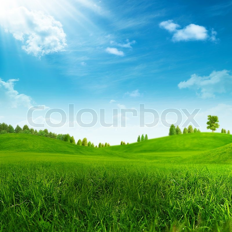 Beauty summer day on the green hills, stock photo
