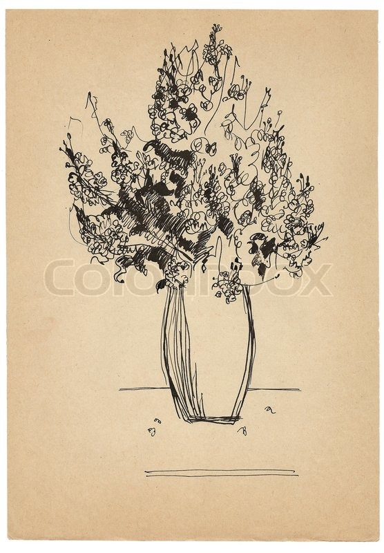 Pen drawing bouquet sketch on old paper | Stock Photo | Colourbox