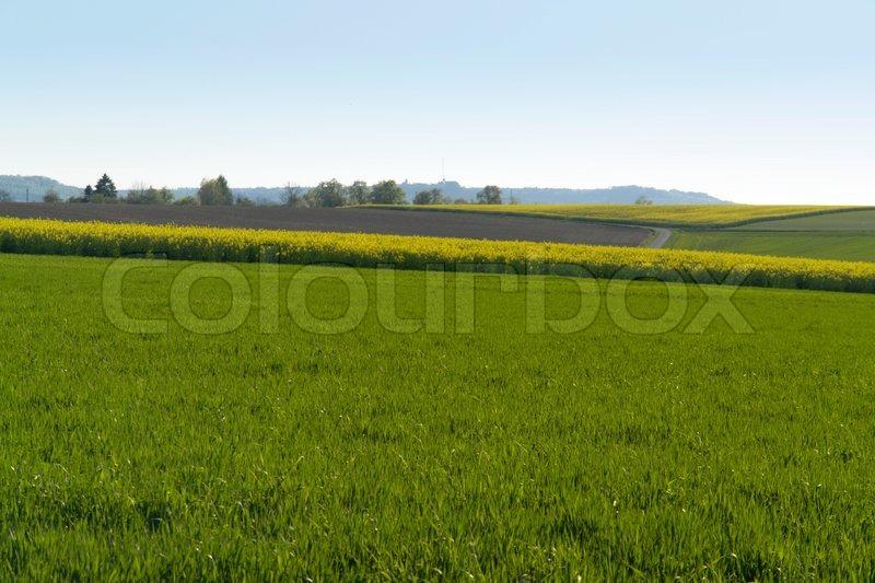 Rural spring scene in Hohenlohe, a landscape in Southern Germany, stock photo