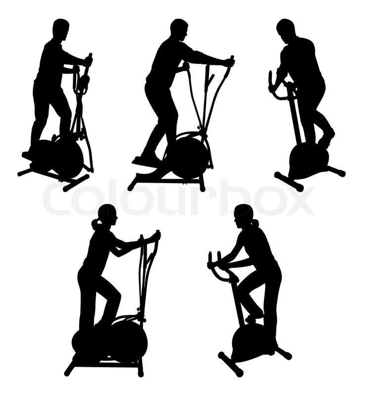 Silhouettes of fitness people on gym bike - vector   Stock ...