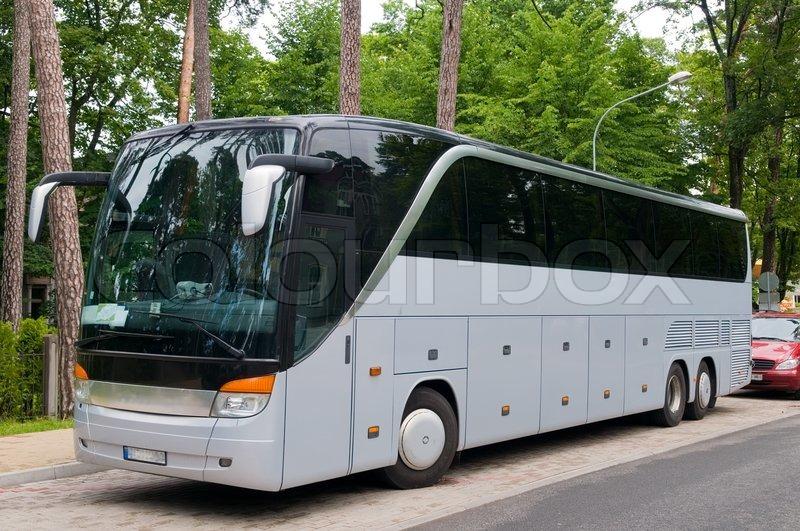 Große Buse