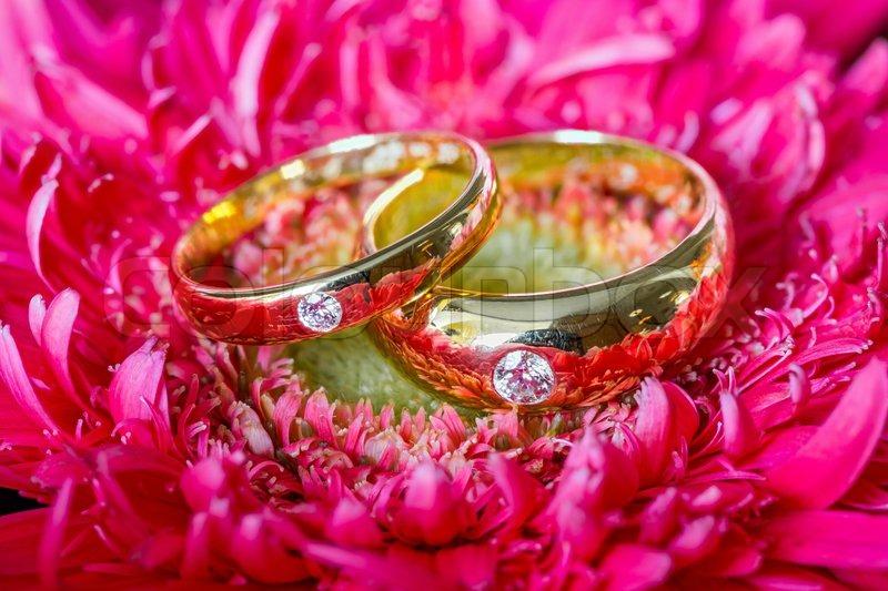 photographs wedding flowers rings