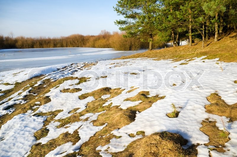 Frozen river and trees in spring season, stock photo