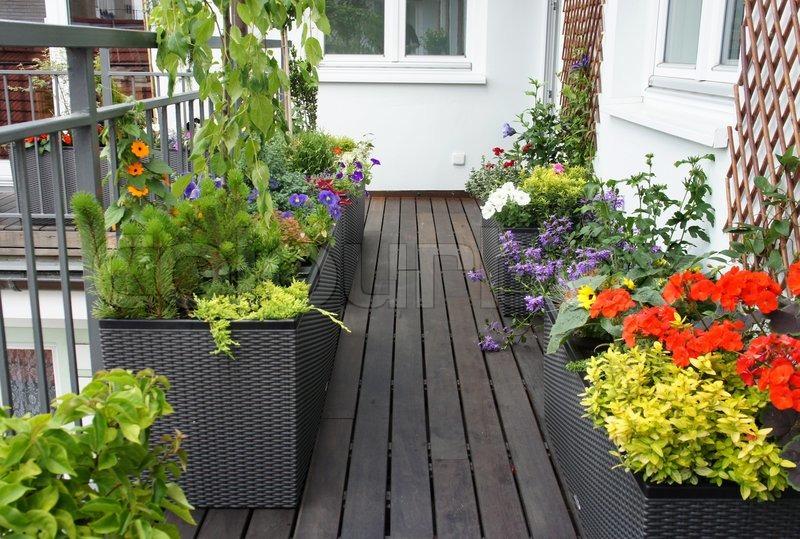 moderne sch ne terrasse mit vielen blumen stockfoto colourbox. Black Bedroom Furniture Sets. Home Design Ideas