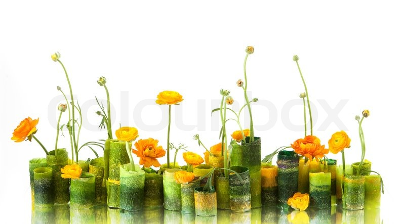 Stock image of 'Composition of flowers'