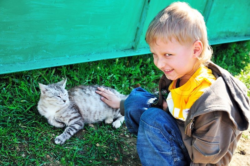 Stock image of 'Littleboy stroking a cat'