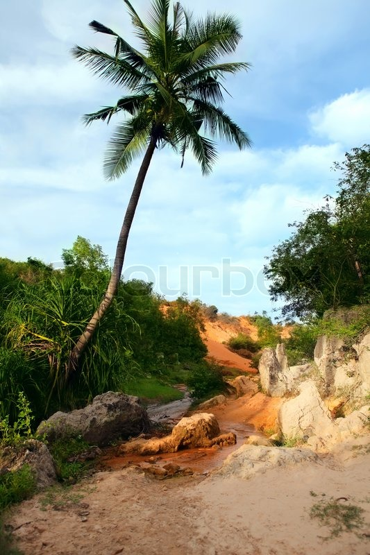 Stock image of 'Red Canyon between jungleVietnam'