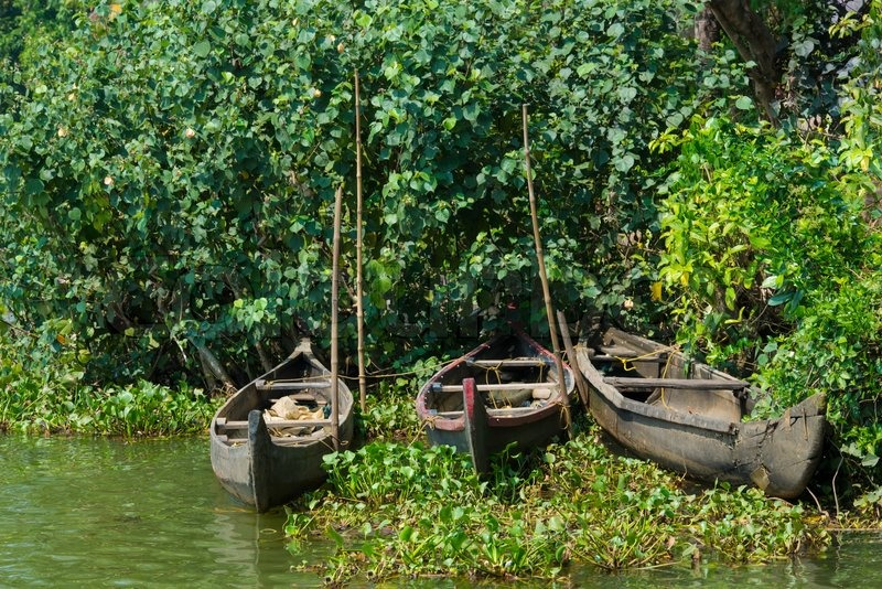 Stock image of 'Beautiful landscape with fishing boats, Kerala India'
