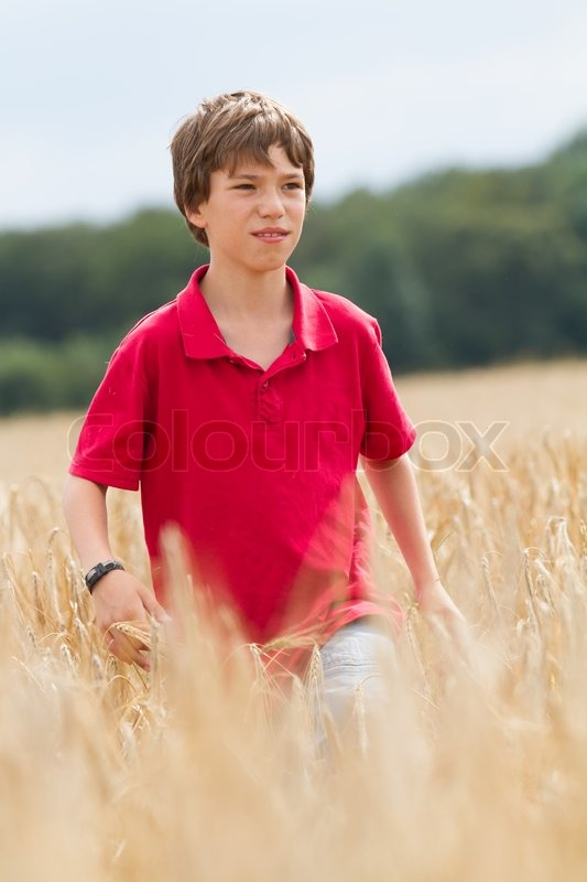 Stock image of 'Child in a wheat field'