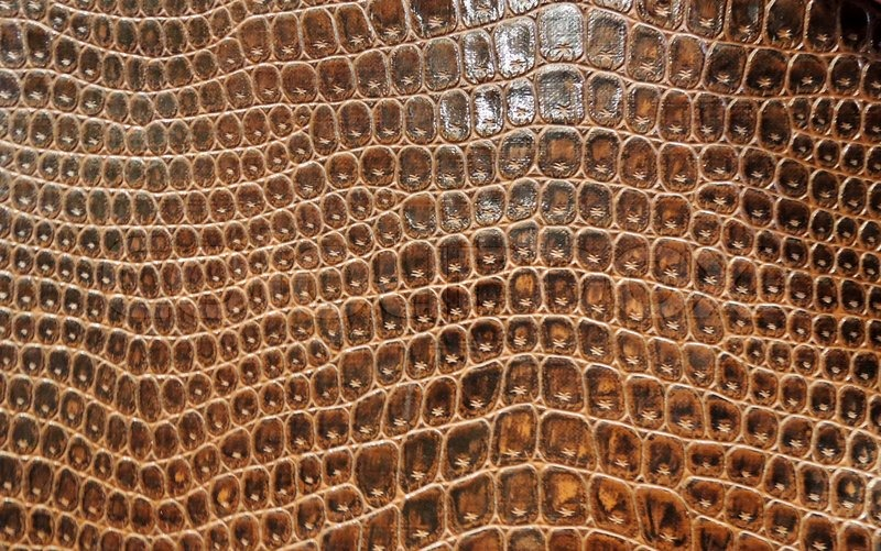 Stock image of 'Abstract brown snake skin'
