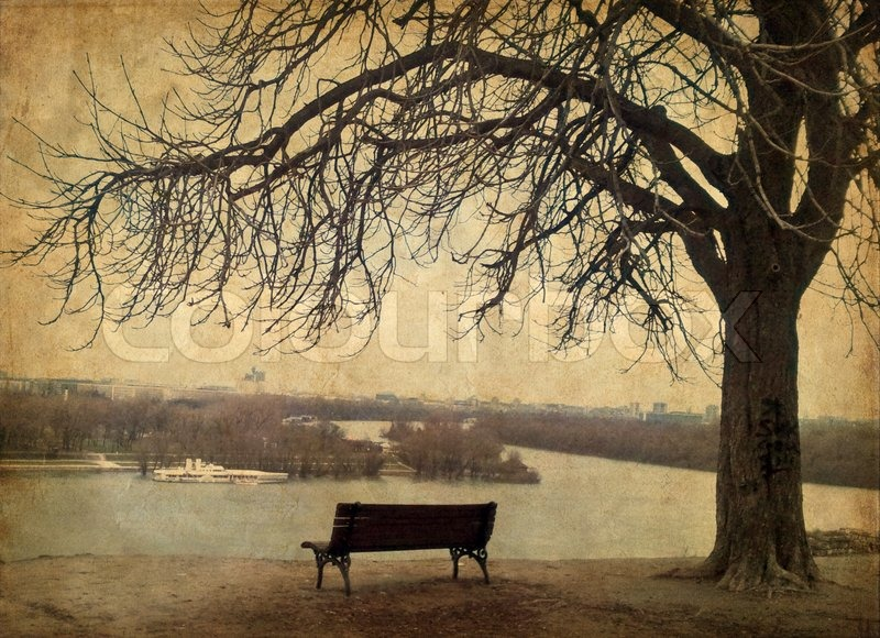 Stock image of 'Bench under the tree by the riverside'