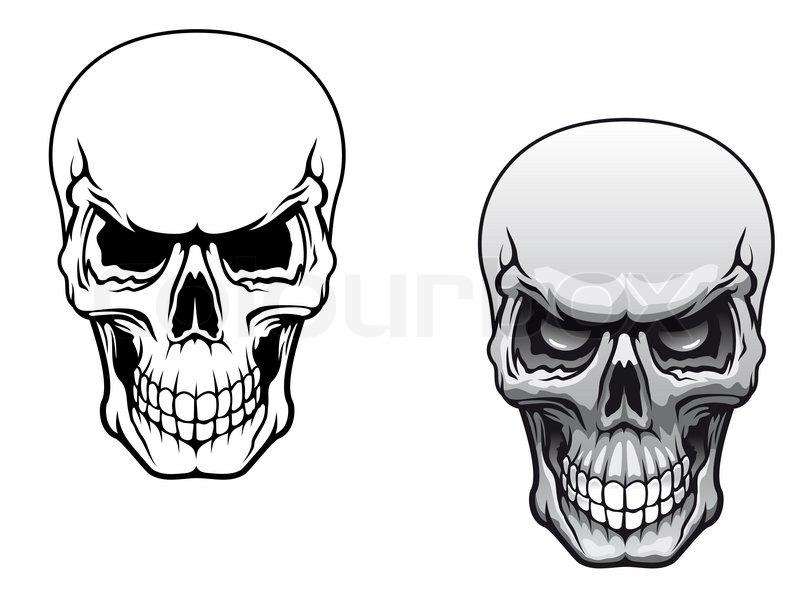 Menschliche Schädel | Stockfoto | Colourbox